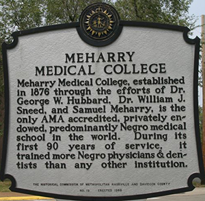 Meharry Medical College Marker - Back
