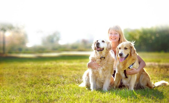 The Health Benefits Of Owning Pets Harriet F Ginsburg